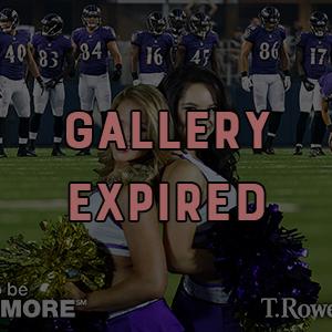 Baltimore Ravens Training Camp Greenscreen